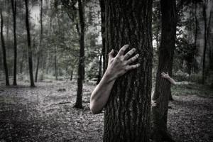 HandsandTrees